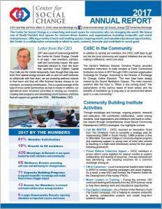 C4SC 2017 Annual Report